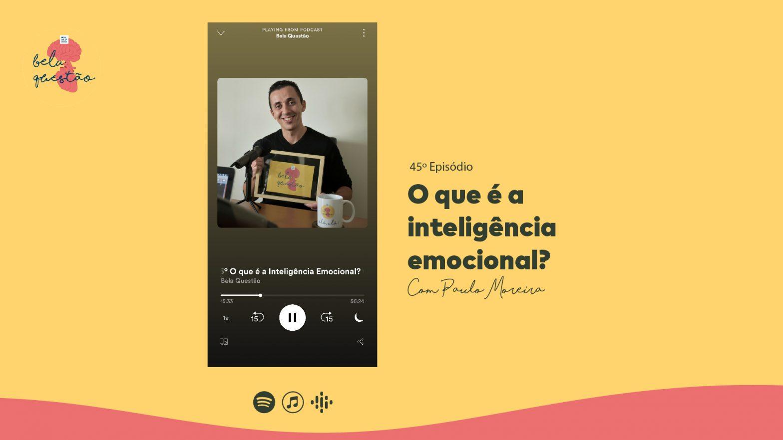 45º O que é a inteligência emocional?